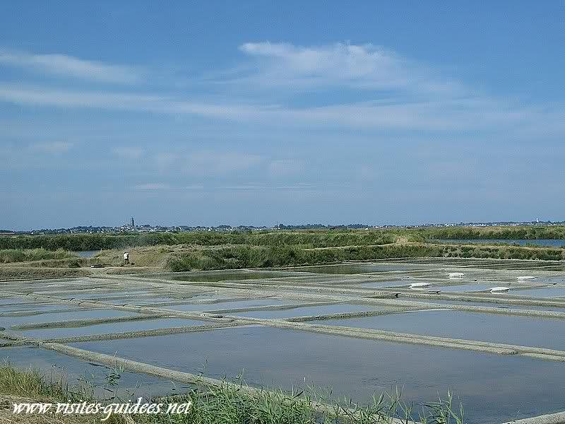 Marais salants Batz sur Mer presqu'île de Guérande