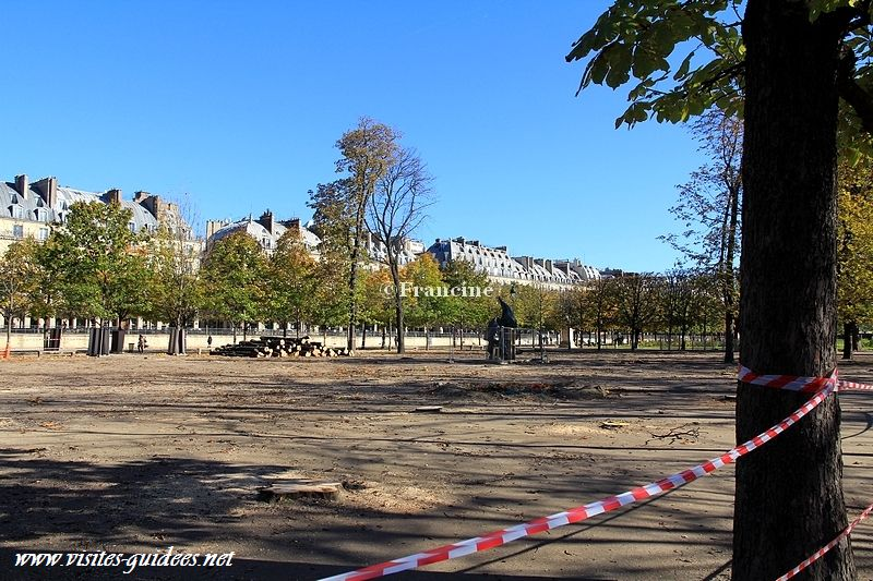Jardin des Tuileries replantation