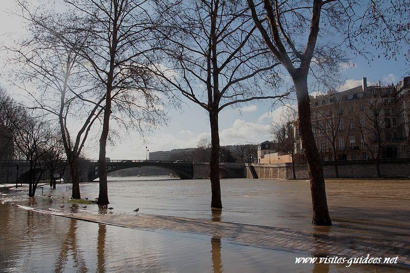 Crue de la Seine février 2013