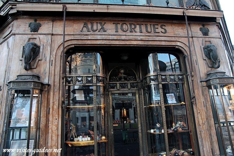 Aux tortues
